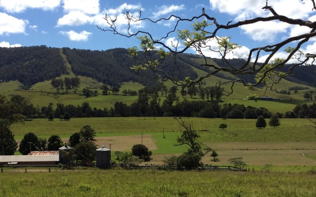 gadara-farm